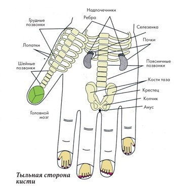 Самоисцеление. Простые техники для пальцев